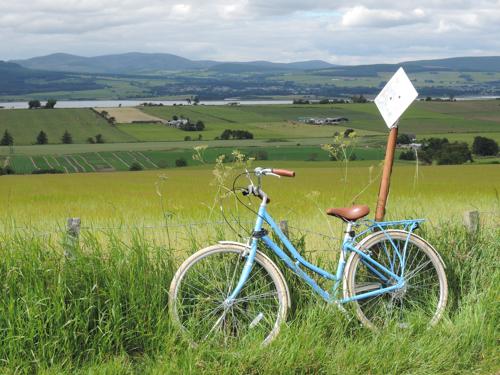 Bike, Brae, Springfield