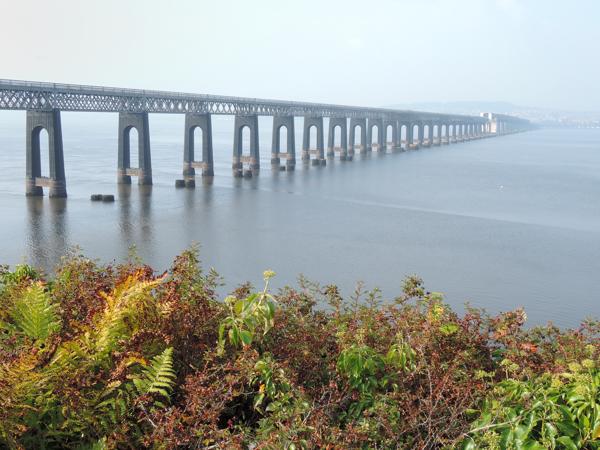 Mile 100 - Tay Bridge. Sponsored by Anna Vachon, Stephanie Kiel and Jim Hampson.