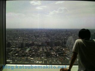 都庁からの眺め 2007