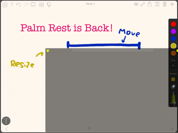 NL update blog 4 palm rest