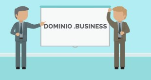 domini hosting business