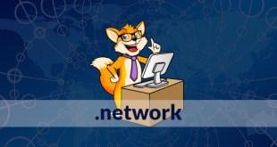 estensione dominio web .network