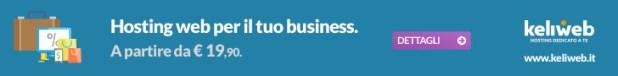 hosting web business