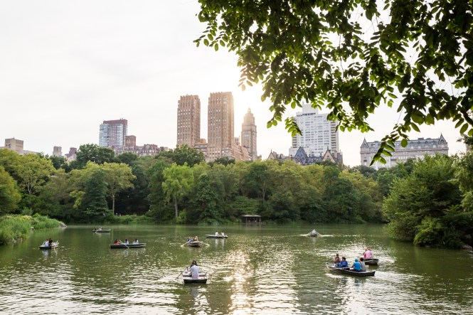 Central Park lake for an article entitled, 'Do you need a permit to get married in Central Park?'
