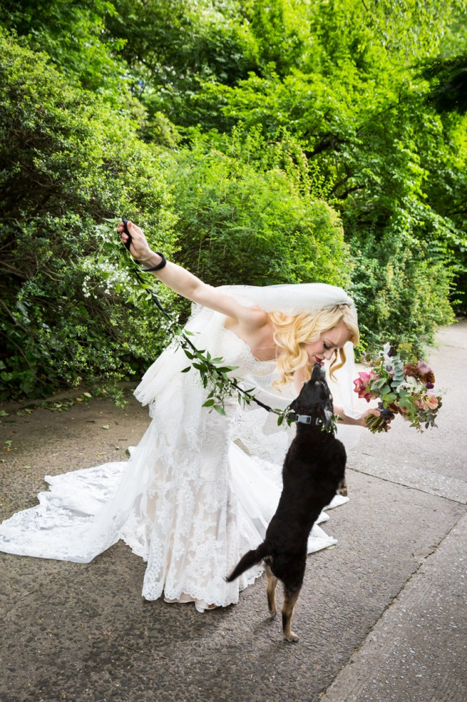 Bride and jumping dog at a Central Park Conservatory Garden wedding