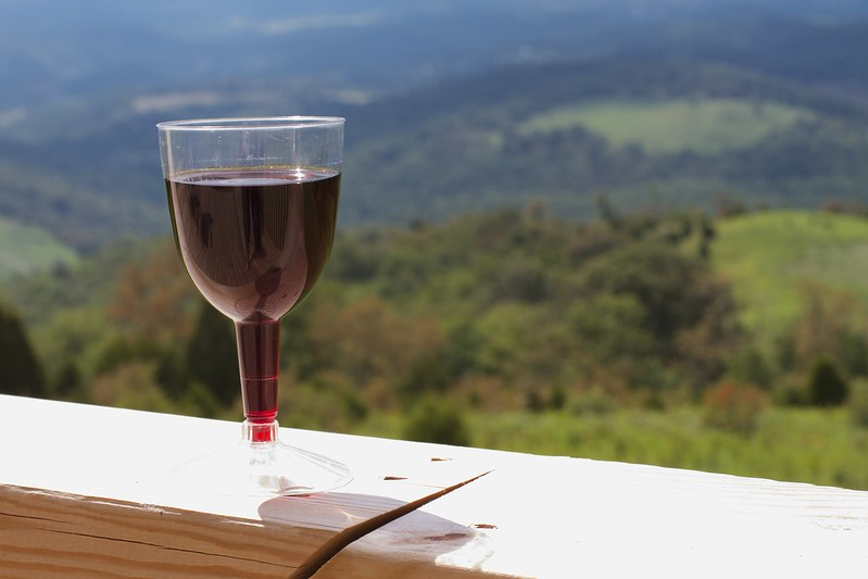 Glass of wine on the rail of a deck with a nice view of nature below.