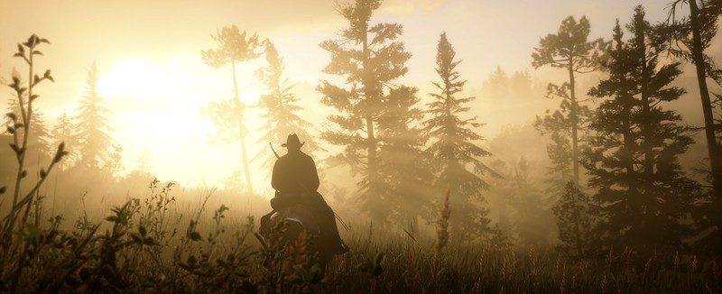 Screenshot of Red Dead Redemption 2 of Arthur Morgan on his horse riding through tall grass with the sun flaring into the lens.