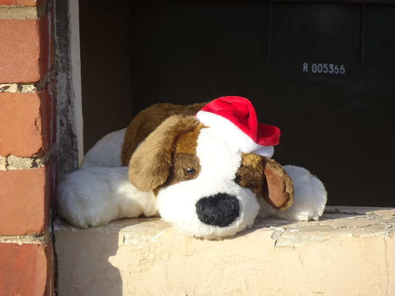 Toy dog with Santa hat.