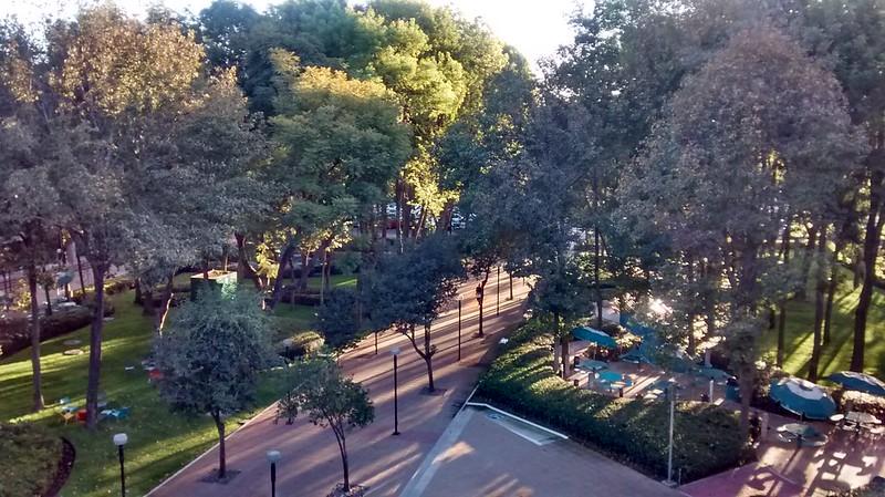 Tec de Monterrey in Guadalajara garden area from the 4th floor administrative building.