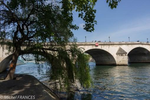 Image bucolique devant le Pont Royal