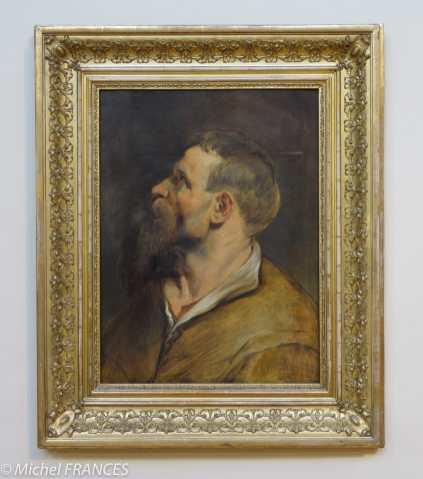 Palais Sternberg - Galerie nationale - Pierre Paul Rubens - Étude d'un homme de profil - 1611-1613