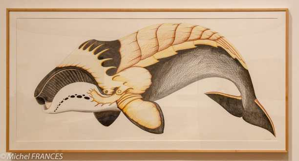 musée des beaux-arts d'Ottawa - Tom Pitsiulak - Baleine blindée - 2014