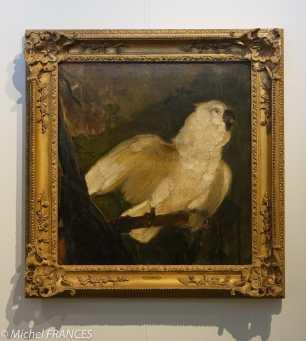 Musée beaux-arts de Brest - Édouard Manet - Deux perroquets