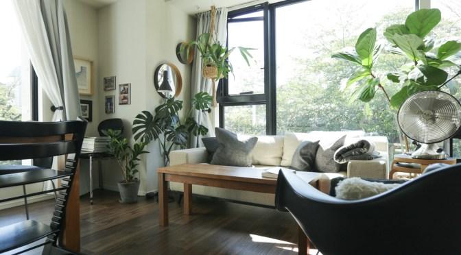【季節の模様替え】ルンバが通れない低いソファを持ち上げるには…