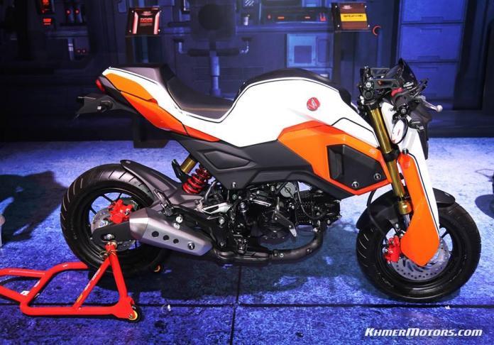 Custom Honda MSX125SF 2016 (3)