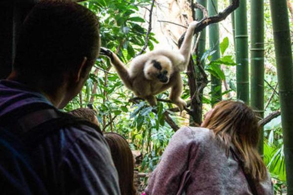 NY-WildlifeConservationSociety-Photo4