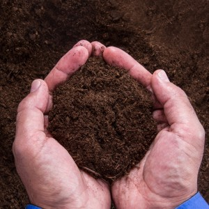 soil-pH