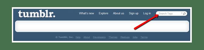 Tumblr search bar