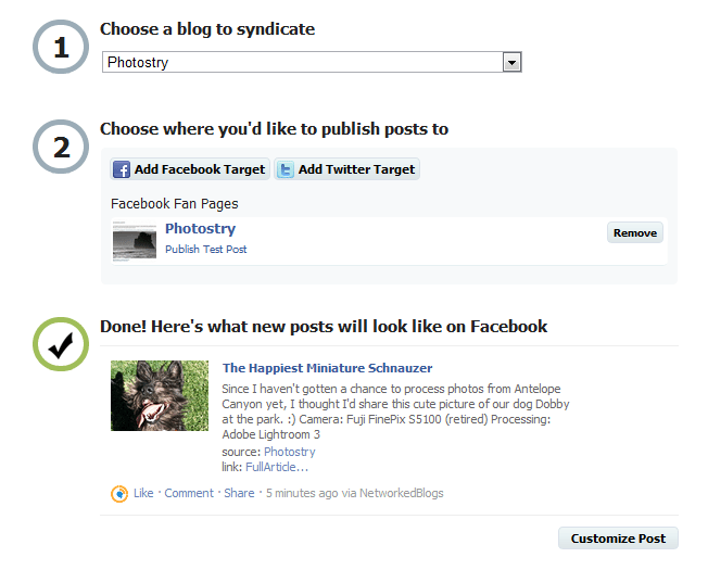 networked blogs facebook updates