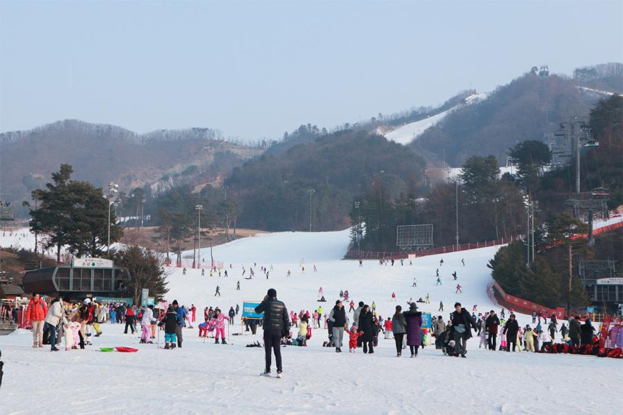 橡樹谷滑雪