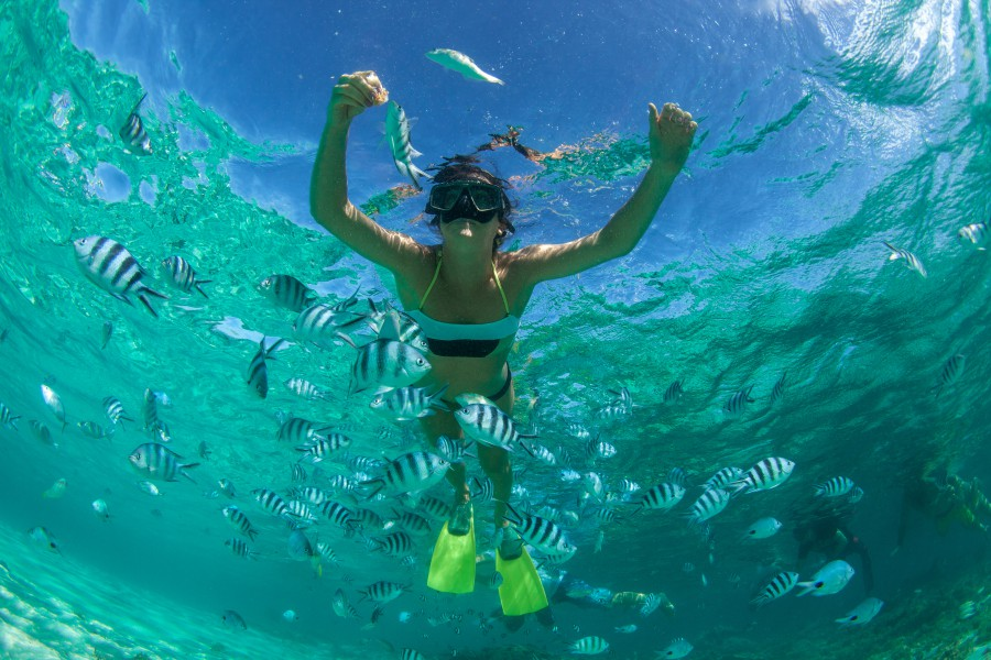 900 Experience Water Activity SnorkelingScuba Diving Ashutterstock 254563387