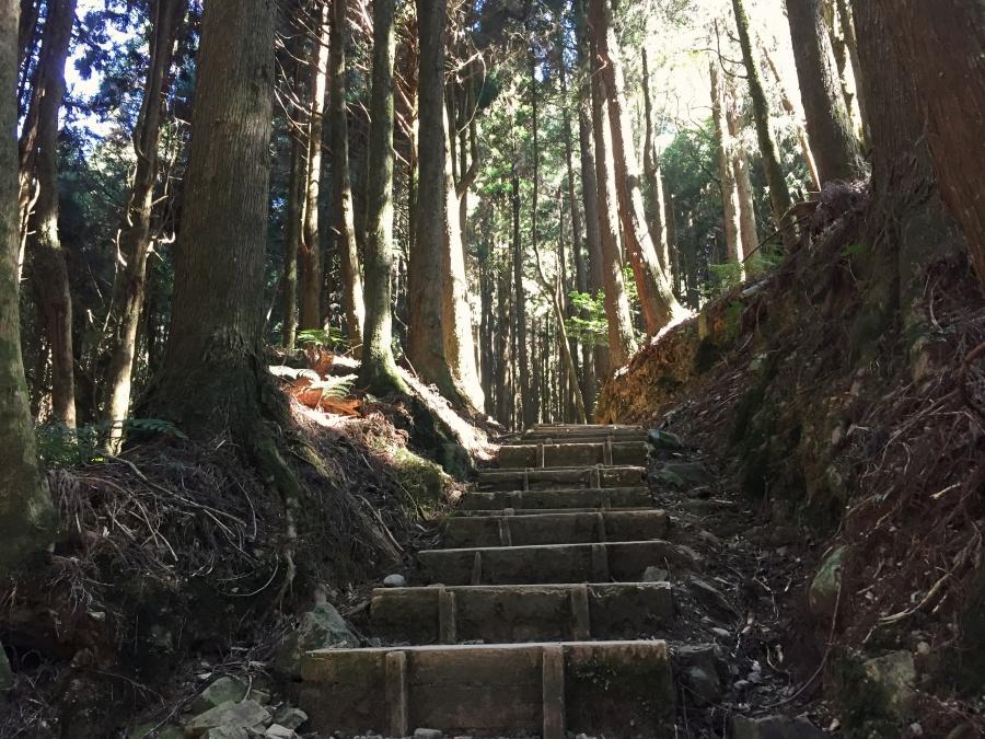 台灣登山健行步道推薦:特富野古道