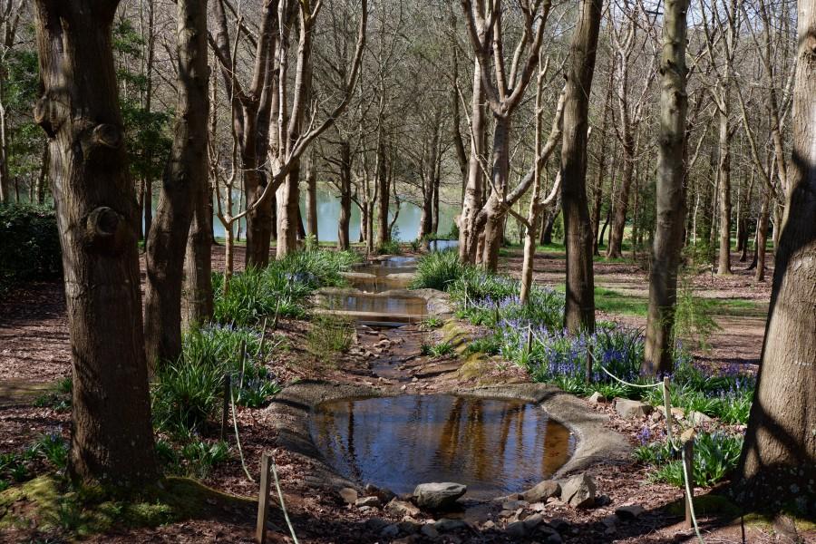 摩寧頓半島一日遊、迷宮花園