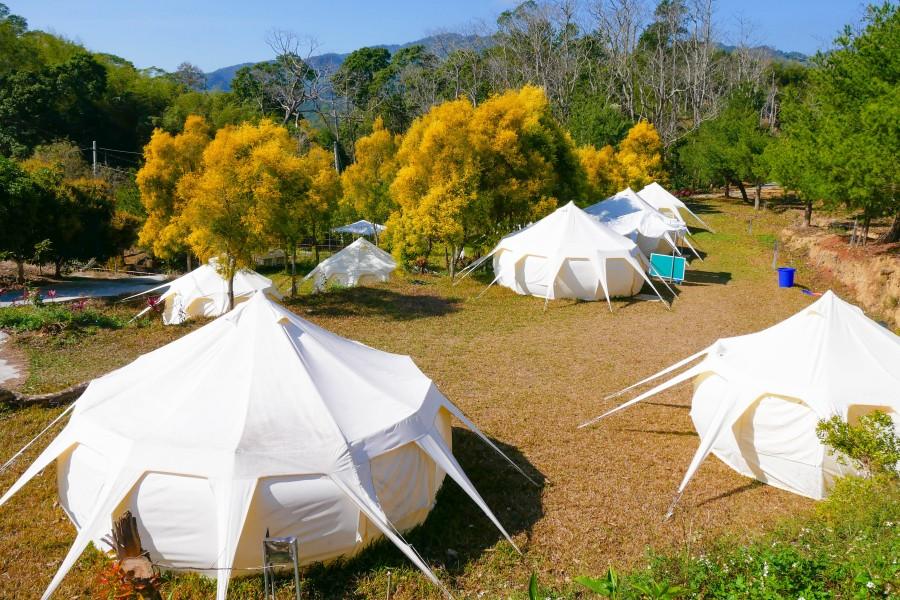 苗栗願森林 露營
