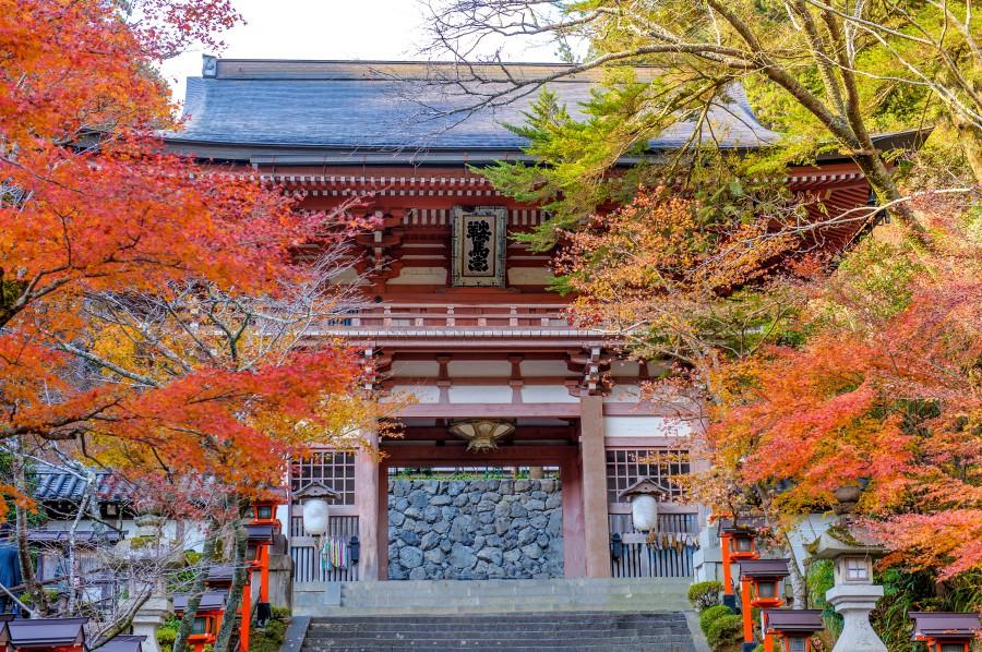 kyoto-kurama