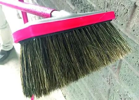 Hog Hair Foam Brush