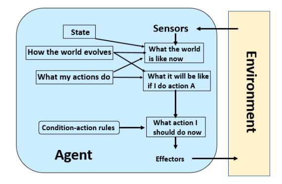 Agent in a task environment