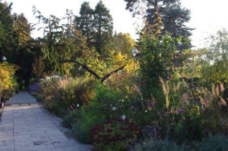 Garten im Herbst © Isabelle van Groeningen