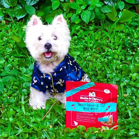 Westie freeze dried dog food