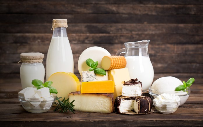 Cheese, milk and yoghurt — these dairy products contain lactose, where cats & dogs are often lactose-intolerant.