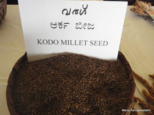 വരഗ് (Kodo Millet) വിത്ത്