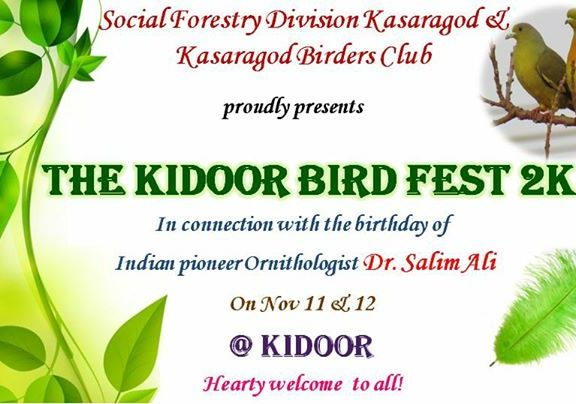 Kidoor Bird Fest 2018
