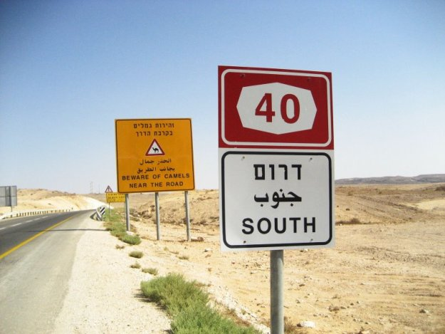 Road_40_South