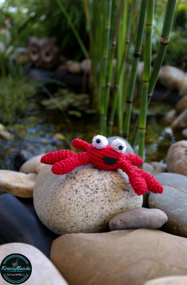 Was (krabbe)lt denn da am Teich?