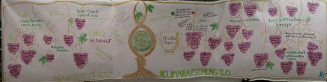 Visual Summary des Klimaratschlag 3.0 als Wissens-Rebstock
