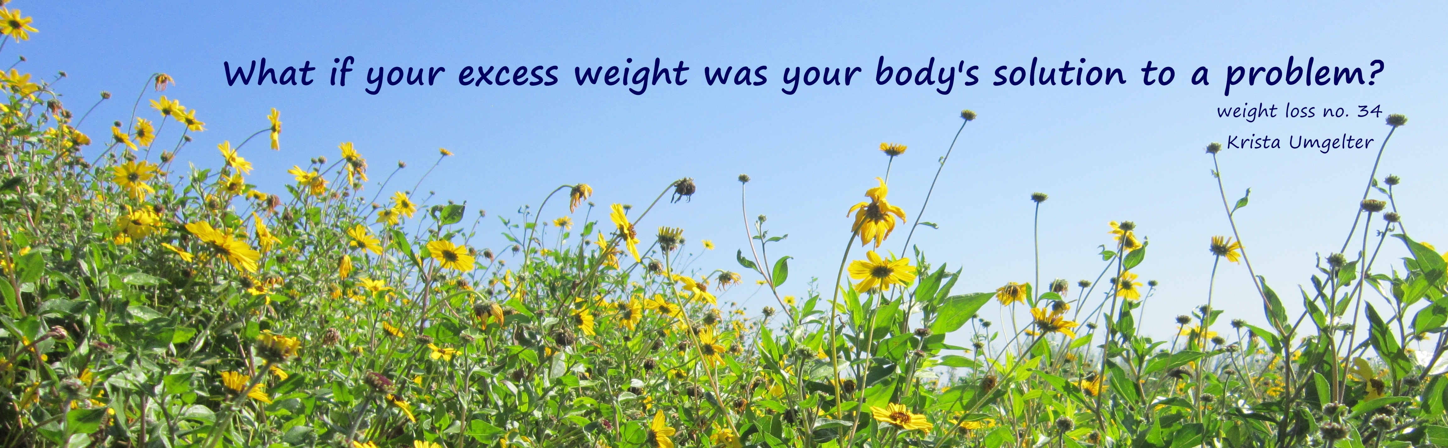 What if your excess weight was your body's solution to a problem? – Weight Loss No. 34