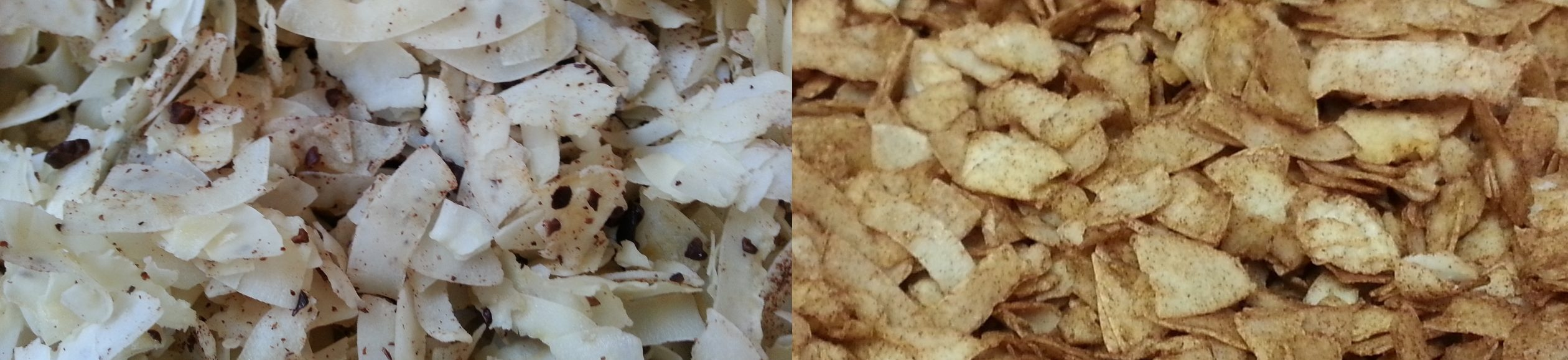 Coconut Maple Chips (only two ingredients, 3 if preferred)