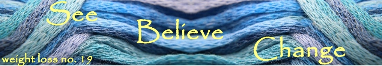 See + Believe = Change (Weight Loss No. 19)