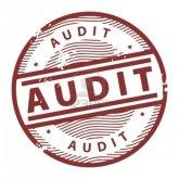 audit_1