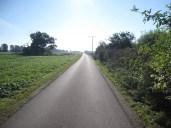 Typische endlose Strasse im Herzen Brandenburgs