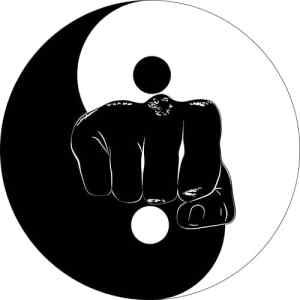 Resultado de imagen de yin yang kyusho