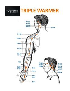 Triple Warmer Meridian