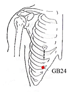 The Pressure Point Gall Bladder 24