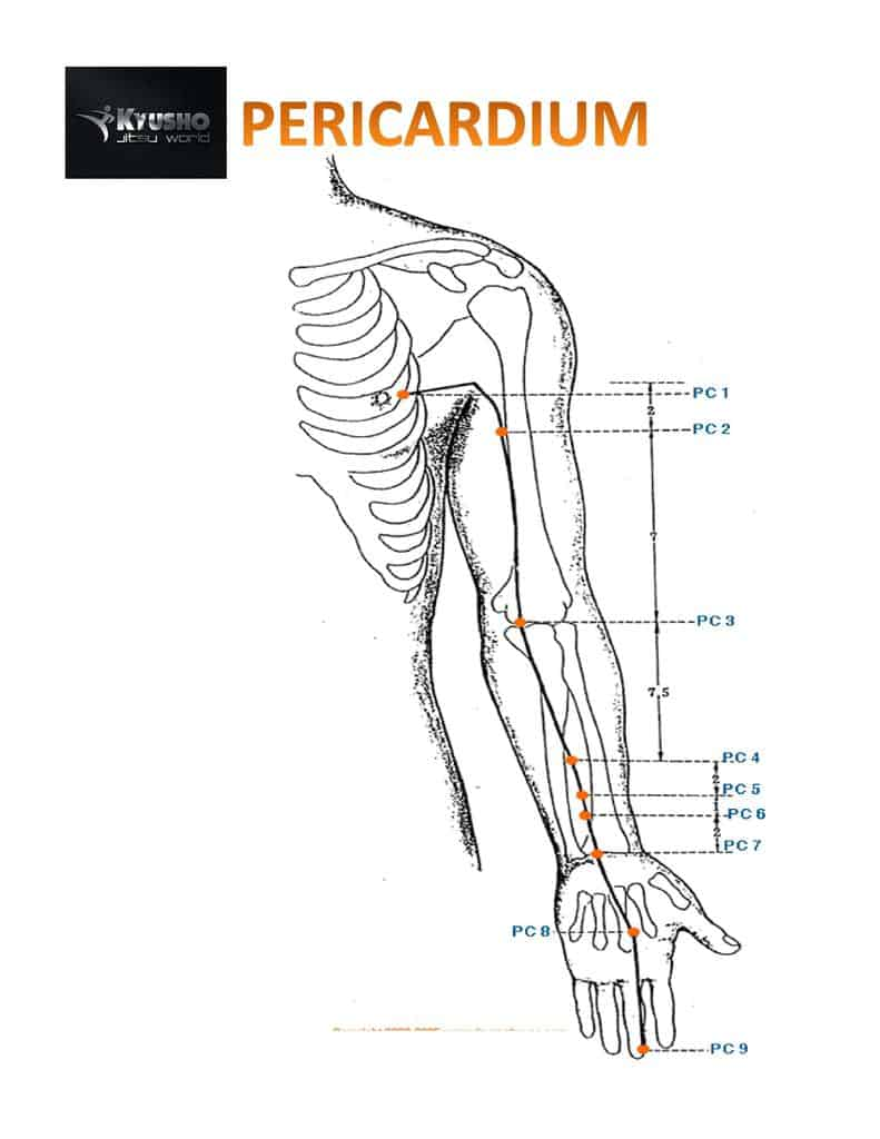 The Pressure Point Pericardium 6