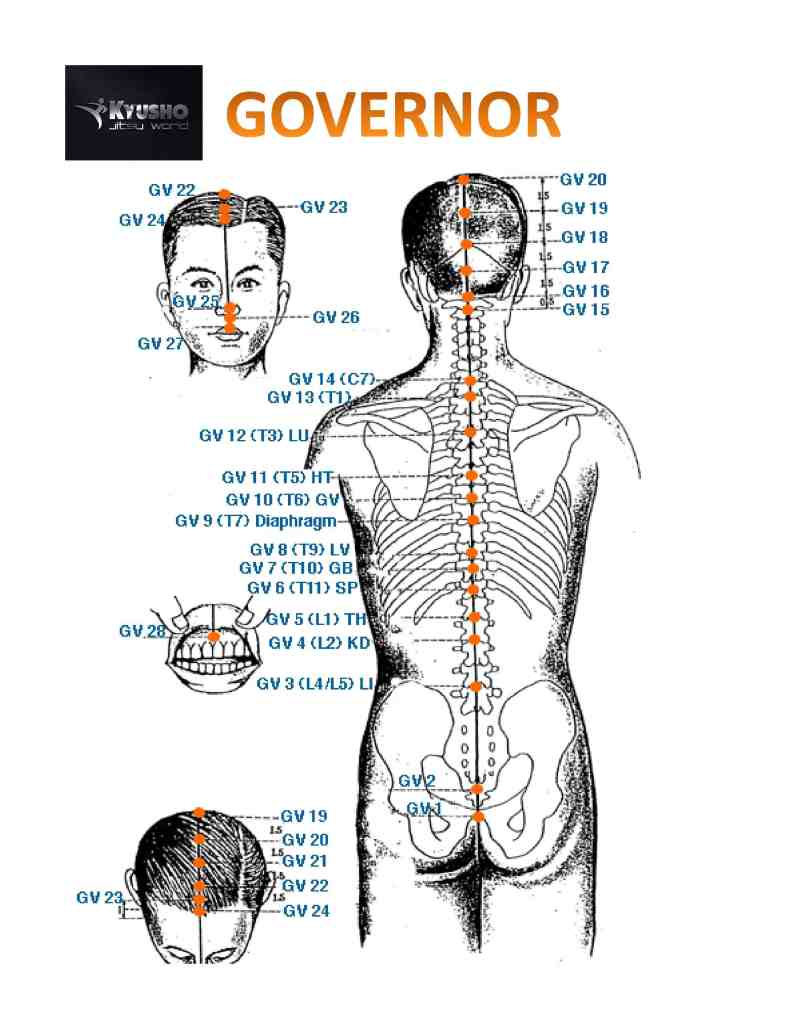 The Pressure Point Governor Vessel