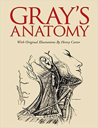 Gray's Anatomy - Kyusho Pressure Point Reference